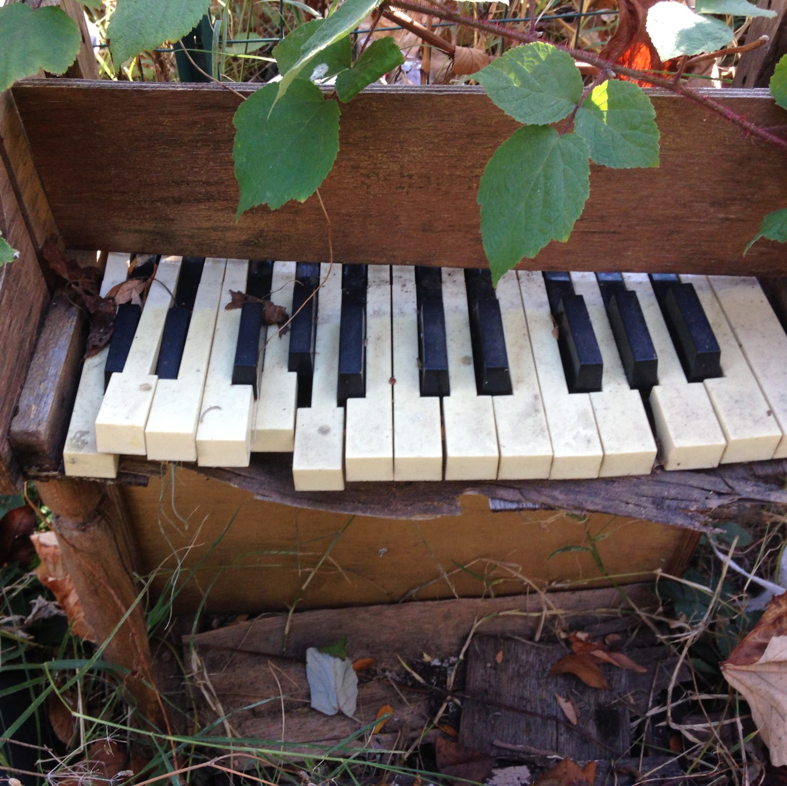 UnCaged Toy Piano